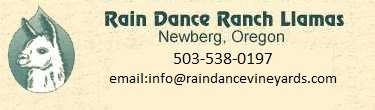Rain Dance Ranch Llamas logo